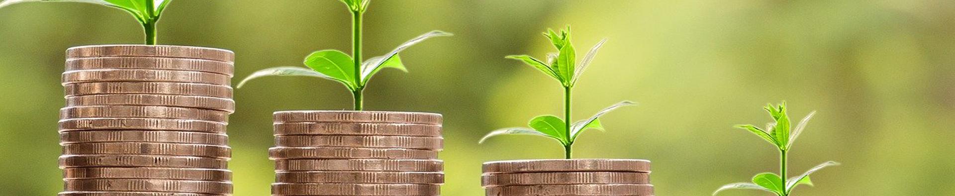 Online booking and billing system · Debt Management